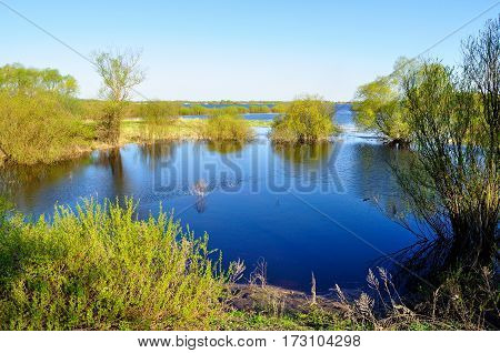 Spring landscape with forest trees flooded with the water of blue river in sunny day - spring landscape view. Colorful spring landscape with river - spring landscape nature