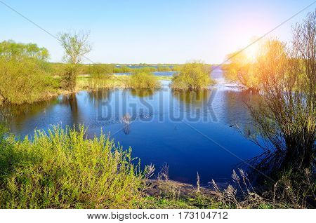 Spring landscape with spring forest trees flooded with the water of blue spring river under sunlight. Spring colorful landscape of spring nature