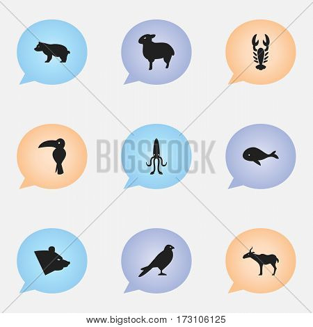 Set Of 9 Editable Zoology Icons. Includes Symbols Such As Tropical Bird, Lamb, Polar Animal And More. Can Be Used For Web, Mobile, UI And Infographic Design.
