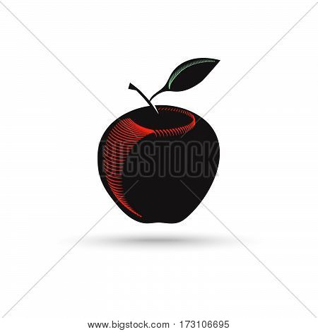 Vector Apple. Apple in engraving style. Vector illustration. Symbol apple dark silhouette isolated on white background.