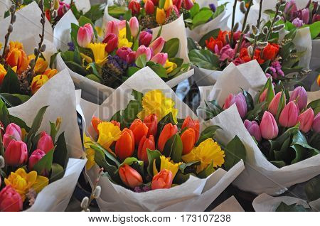 Colorful tulip and daffodil floral bouquets on display at the market