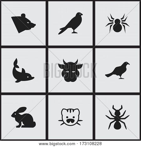 Set Of 9 Editable Zoology Icons. Includes Symbols Such As Beast, Bedbug, Grizzly And More. Can Be Used For Web, Mobile, UI And Infographic Design.