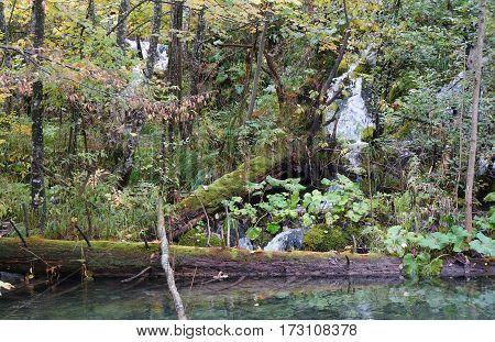 Waterfall of Plitvice national park in Croatia