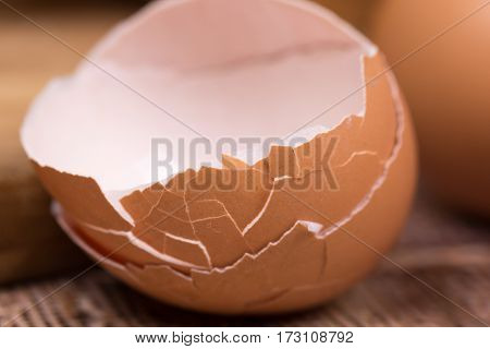 Closeup Macro View Smashed Eggs Eggshell