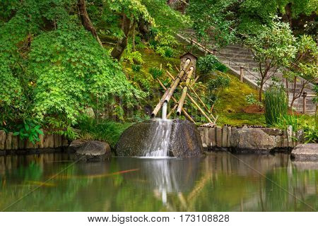 Idyllic pond in the park of Kamakura, Japan