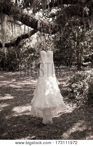 Sepia tone photo of wedding dress hanging from tree in Southern wedding