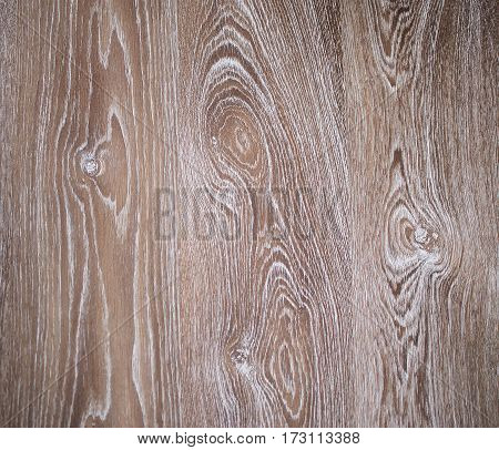 Concentric banded pattern texture wood brown, close-up