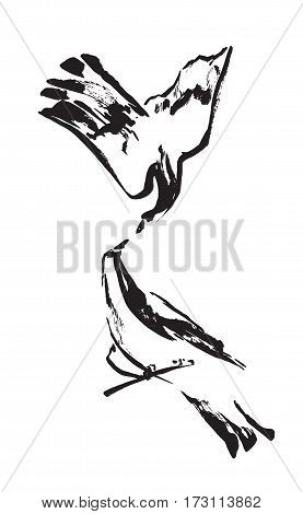 Two decorative birds painted by black ink. Hand drawn vector illustration. Isolated on white background.