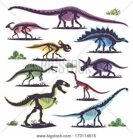 Skeletons of dinosaurs silhouettes set fossil bone tyrannosaurus prehistoric animal and jurassic monster predator dino vector flat illustration. Reptile extinct paleontology old bones.