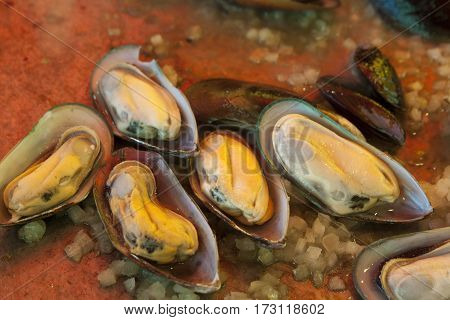 seafood mussels with vegetables and tomato cozze in umido