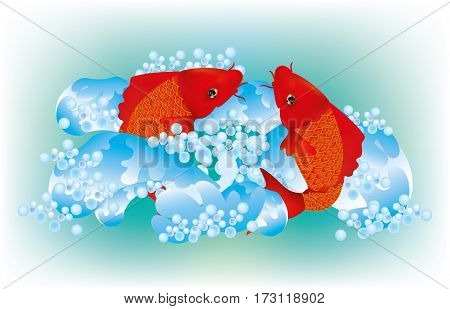 Koi carps in the water with waves