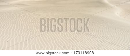 Stunning panoramic Mangawhai Heads sand dunes windswept ripple patterns background