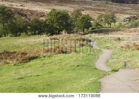 Moorland pathway crosses the scenic Longshaw Estate, Peak District, Derbyshire, UK