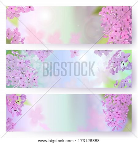 Spring background with pink and purple flowers of lilac. Can be used for background, wallpaper, greeting card, web. Vector horizontal banner. EPS10