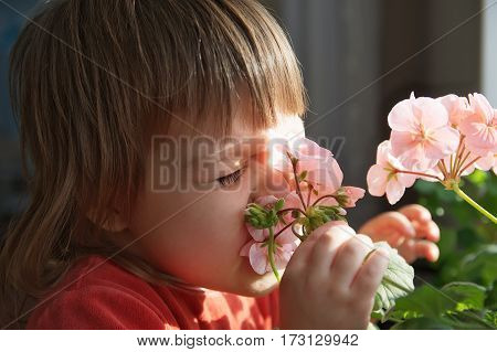 Little girl with funny face smelling spring flowers kid funny face feeling happinessjoyful people concept without spring allergy