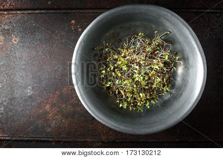 Flax sprouts in a bowl on a metal table copy space horizontal