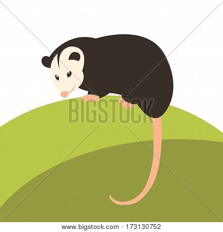 opossum vector illustration style Flat profile  side
