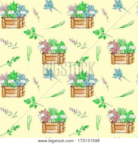 Seamless pattern with the isolated watercolor spices (spicy herbs) in a wood boxes: onion green, parsley, cilantro, sage and basil, painted on a light yellow background