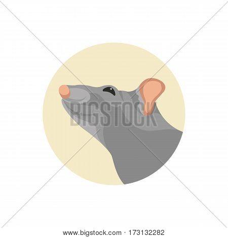 rat head face vector illustration style Flat