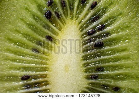 fresh kiwi in the context of macro