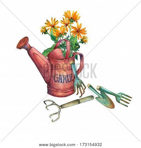 Vintage red garden watering can with a bouquet of yellow flowers and garden tools. Hand drawn watercolor painting on white background.