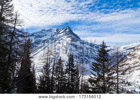 Mountains in the winter with snow on them. Trees and a blue sky can be seen.