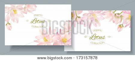 Vector botanical horizontal banners with white lotus flower on white. Design for natural cosmetics, health care and ayurveda products, yoga center. Can be used as greeting card or wedding invitation.
