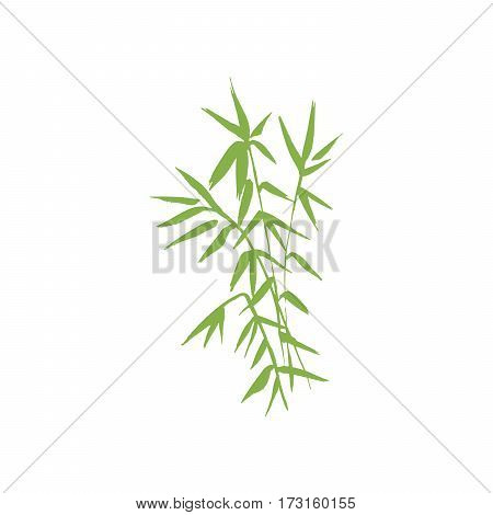 Bamboo green plant isolated vector nature illustration