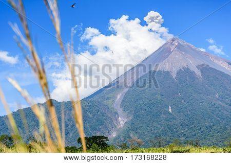 Smoke puffs from Fuego volcano, Guatemala, Central America