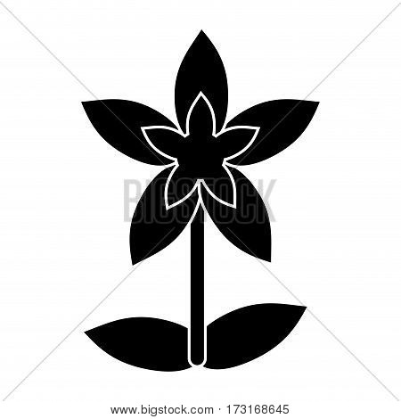 flower tropical exotic pictogram vector illustration eps 10