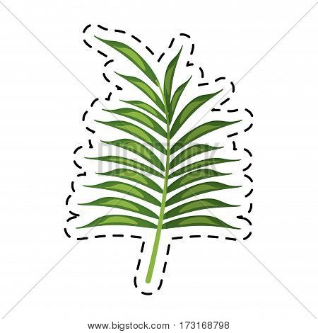 cartoon leave palm tropical flora vector illustration eps 10