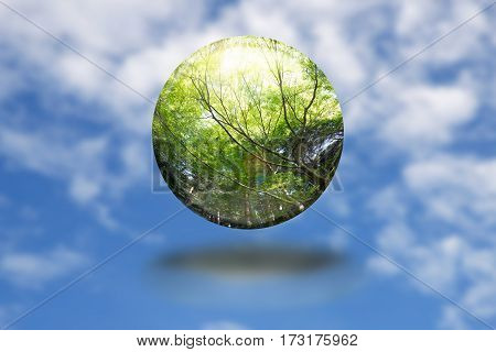 Global environment like sphere ball of forest on Earth on blue sky background.