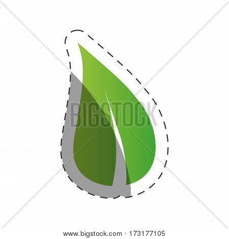 leave nature environment design vector illustration eps 10