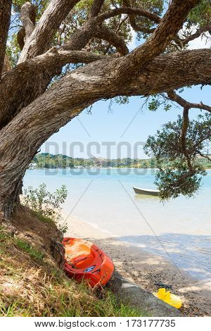 Dinghy floating on water orange kayak under arching pohutkawa tree in summer holiday destination on scenic Ngunguru estuary Northland New Zealand.