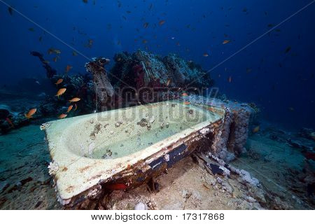 Cargo Of The Yolanda Wreck In The Red Sea.