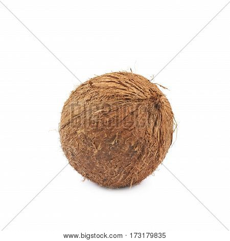 Single whole coconut isolated over the white background