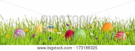 Easter Eggs In Grass Isoleted