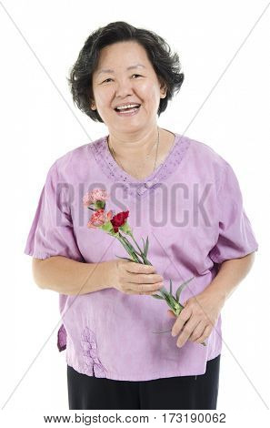 Happy mothers day concept. Portrait of 60s Asian senior adult woman hand holding carnation flower gift and smiling, isolated on white background.