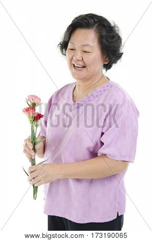 Celebrating happy mothers day concept. Portrait of 60s Asian senior adult woman hand holding carnation flower gift and smiling, isolated on white background.