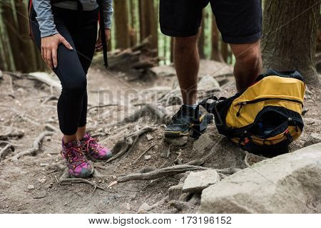 Low section hiker couple standing in countryside forest