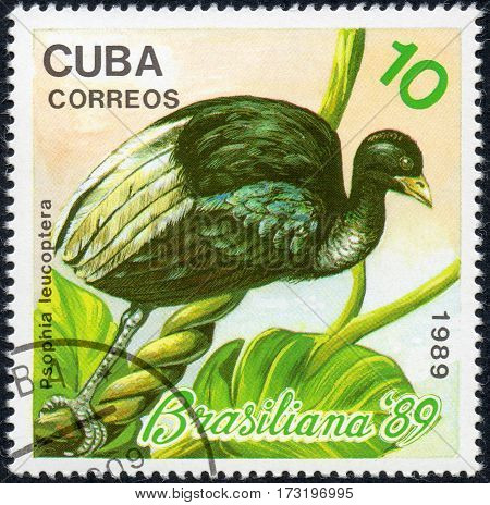 UKRAINE - CIRCA 2017: A stamp printed in Cuba shows a bird White-winged trumpeter Psophia leucoptera the series Brasiliana '89 circa 1989