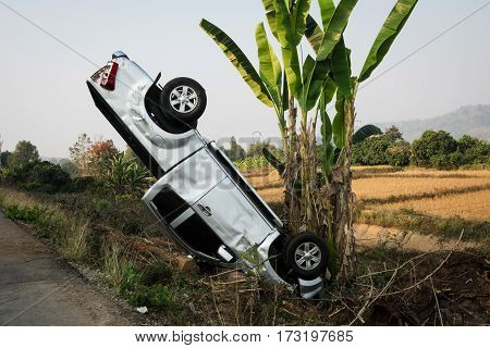 Car Crash With Banana Tree car makes headstand and leaning against a banana tree