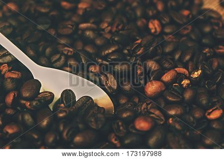 Grain beans coffe and silver spoon. Detail ingredients for hot drin.