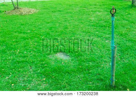 Close up tripod Sprinkler in the garden.