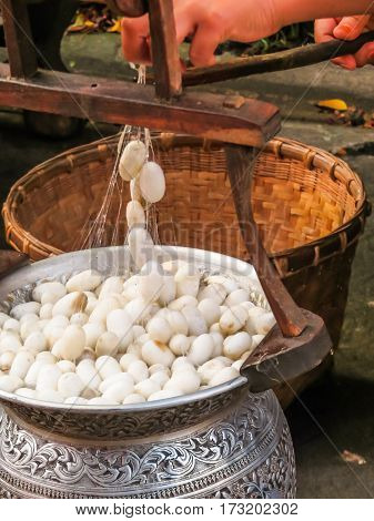 Silkworm cocoons are cooked in the boiling water for thread unwinding. Motion blur. Bangkok, Thailand