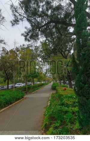 Hanadiv Boulevard,  In Haifa
