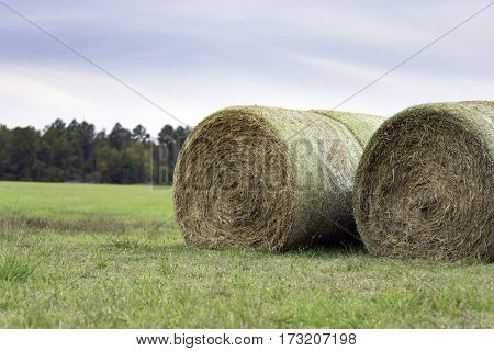 two rows of round hay bales sitting in a field