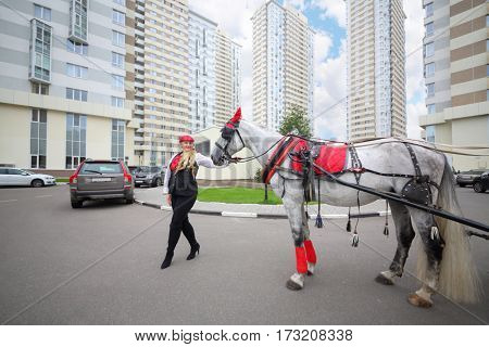 Coachman young woman stands with horse in red harness near residential buildings