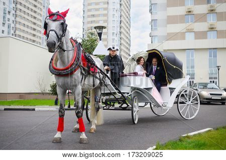 Happy couple are in coach with horse and coachman near residential buildings
