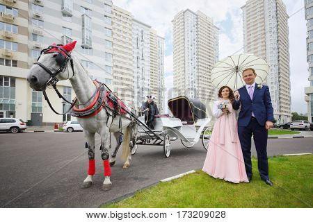 Happy pair poses near coach with horse and coachman near residential buildings
